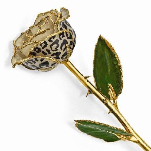 Cream/Black Leopard Rose