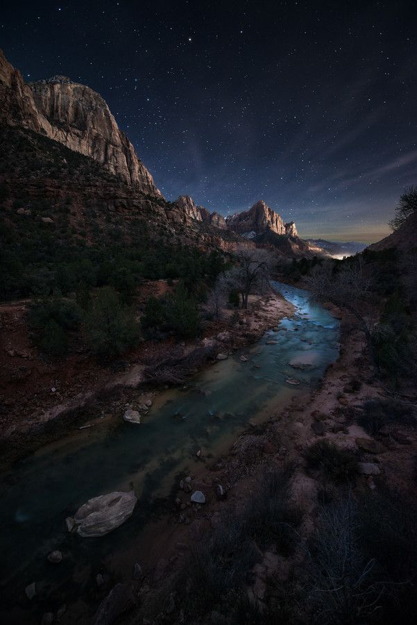 Near Watchman Campground,  Zion National Park, Utah