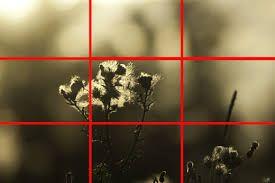 13 Compositie-Horizontale en verticale compositie