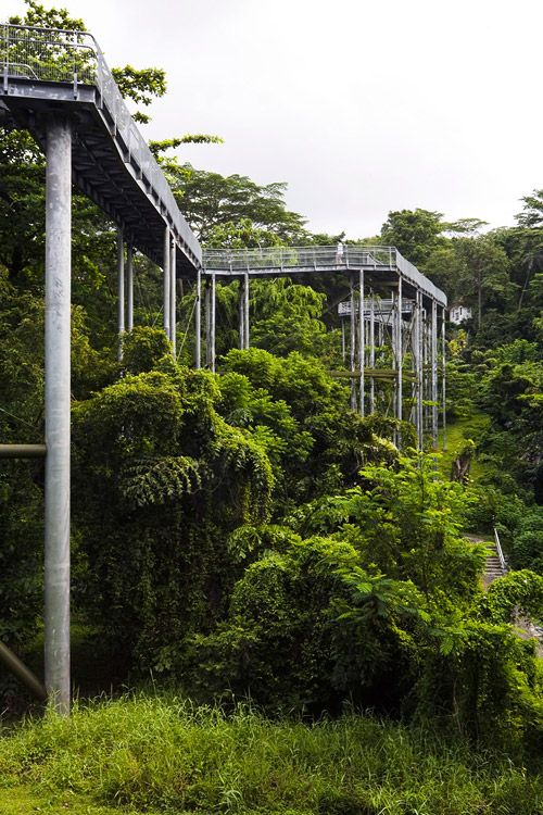 FOREST-WALK-by-look-architects-09 « Landscape Architecture Works | Landezine