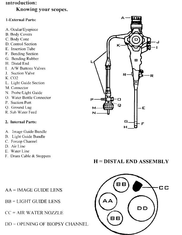 Endoscope Endoscopy FAQ and Inspection Procedures