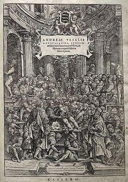 De humani corporis fabrica libri septem (À propos de la structure du corps humain en sept livres1) est un traité d'anatomie humaine que l'on doit au médecin et anatomiste brabançon Andreas Vesalius (André Vésale, 1514-1564). Il a été rédigé en 1543, publié à Bâle, la même année, par Johannes Oporinus et réédité en 1555.