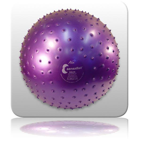 SensaBall - 55cm Purple
