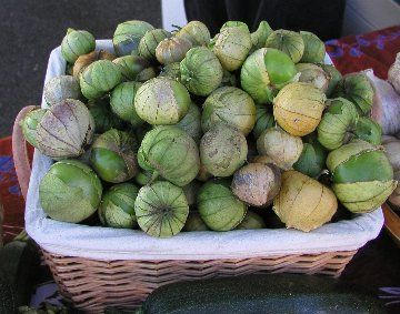 Not my pic, but we got a great crop of tomatillos this year.  Made some salsa with roasted peppers and corn, a little salt.  Tasted like juicy mango chutney!  Killer sweet addition to summer grilling.