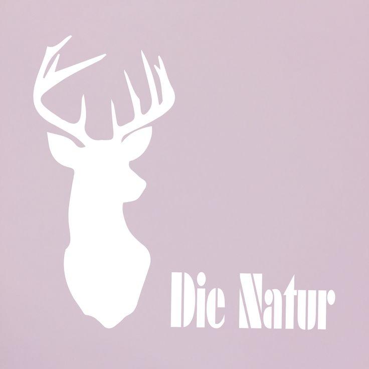 Jagd Hirsch