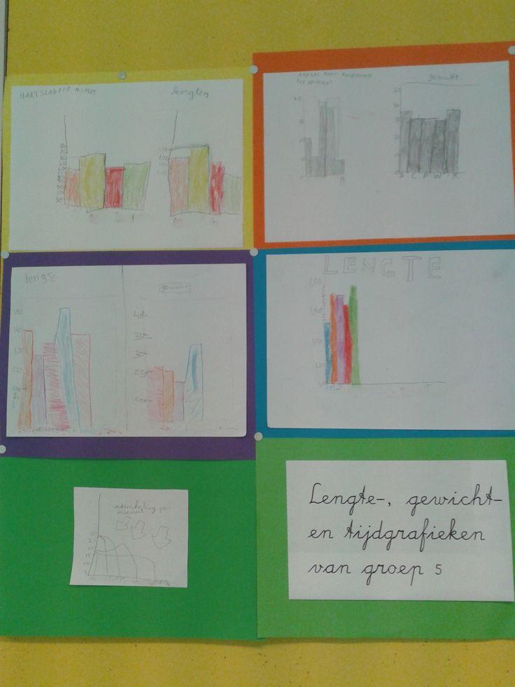 Een leuke en uitdagende les. Laat de kinderen eerst verschillende dingen opmeten (lengte, gewicht, aantallen binnen een minuut), daarna maken ze in groepjes grafieken met hun uitkomsten.