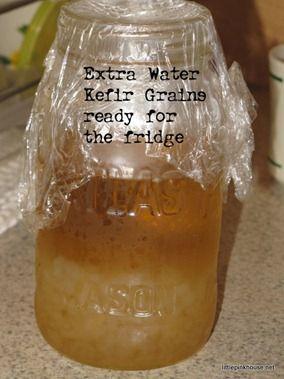 kefir de agua