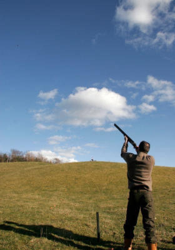12 Best Skeet Shooting Images On Pinterest Skeet Shooting Guns