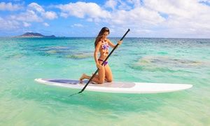 Groupon - One- or Two-Hour Paddleboard Rental with Instruction from Miami Beach…