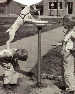 What friends are for!! vintage photo of cute little guys ..