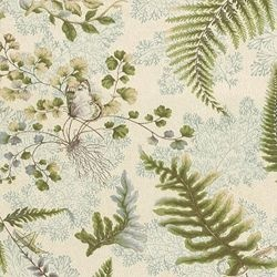 fern: Color Palettes, Print Fabrics, Chair Fabric, Gorgeous Fabrics, Wallpaper, Pattern Fabric, Awesome Colors, Fern Fabrics