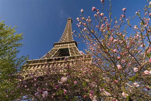 Make the Most of Paris in March