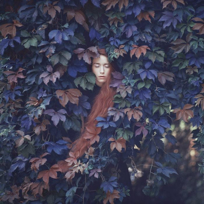 New Surreal Portraits from Oleg Oprisco   http://www.thisiscolossal.com/2013/11/new-surreal-portraits-from-oleg-oprisco/