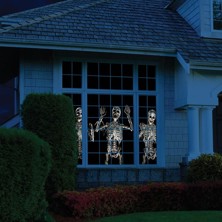 WindowFX Projector - Halloween decorations usually consist of goofy witches on brooms and those fake cobwebs that never seem to come off of trees, but if you're l...