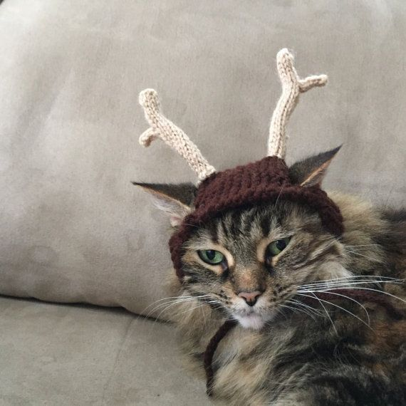Cat dog antler hat christmas reindeer by ScratchingPosts on Etsy