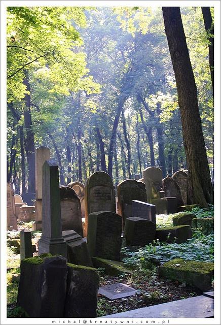 Krakow, old Jewish Cementary.