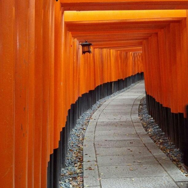 伏見稲荷大社 千本鳥居 · 京都 Senbon Torii, Fushimi Inari Shrine, Kyoto, Japan