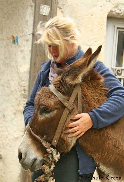 """Outreach project april 2014"" Courtesy: Stichting Ezelhulp Kreta, Crete (Greece)."
