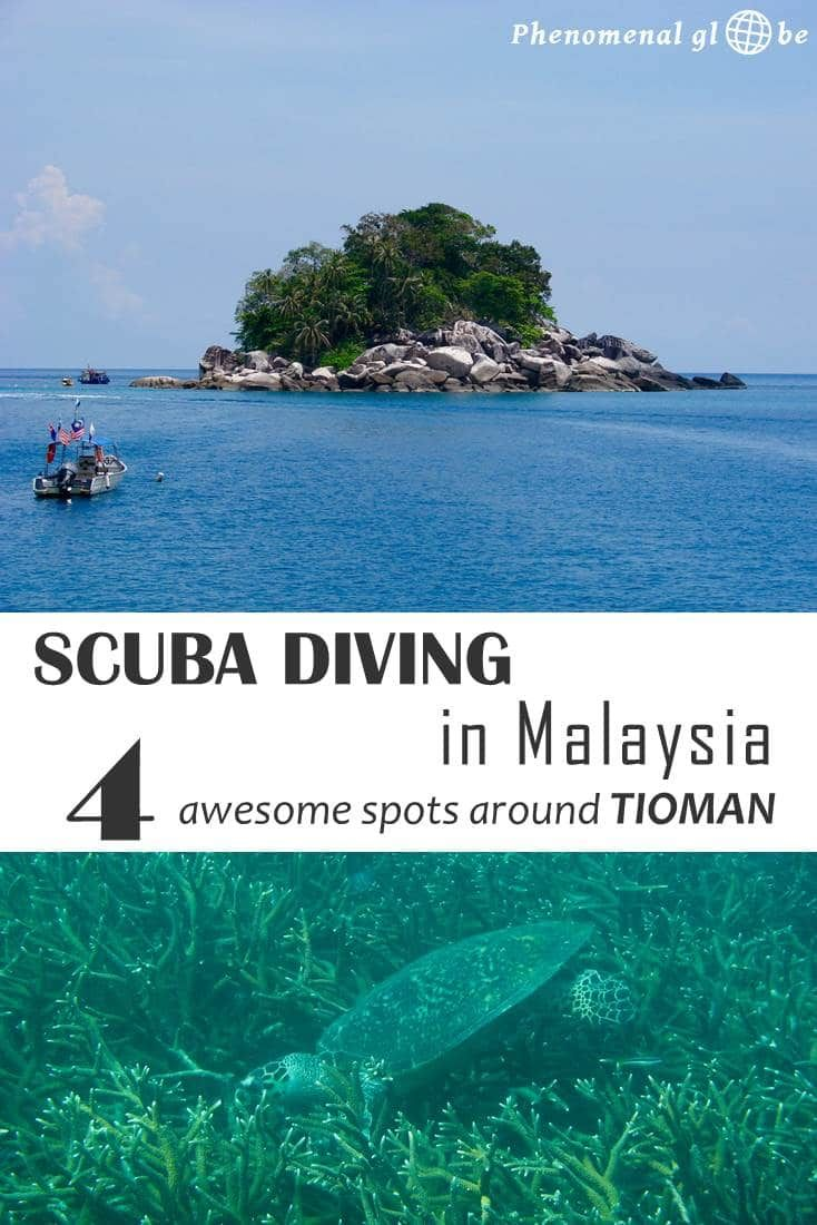 Scuba Diving In Malaysia: 4 Awesome Dive Spots Around Tioman