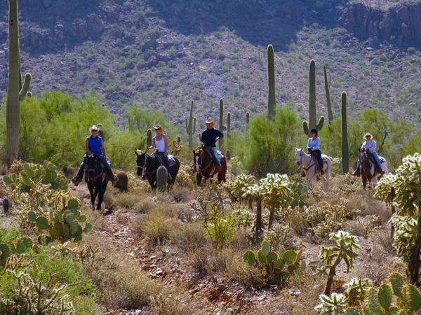 Trail Riding At White Stallion Ranch Tucson