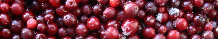 Saskatoon (Amelanchier alnifolia | HortAlaska Berries