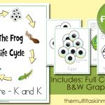 The Life Cycle of the Frog: Pre-K – K