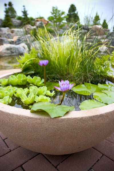 best 25+ patio pond ideas only on pinterest | small garden ponds ... - Small Patio Pond Ideas