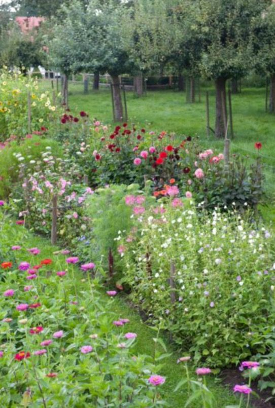 """This flowery garden is from our feature """"A Wild Bunch"""""""