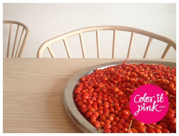 www.coloritpink.com Rowans, Rönnbär, höst, autumn...