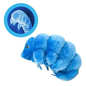 OMG Giant Plush Microbe Water Bear! SUPER WANT! :::Thinkgeek.com $9.99-19.99:::