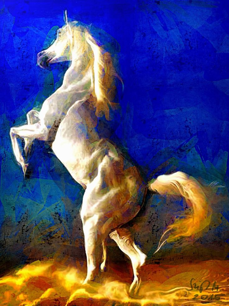 Check out Wild horse by Miklós Szigeti at eagalart.com
