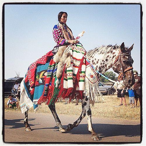 Montana Native Plants: Crow Fair Parade! #parade #crowfair #powwow
