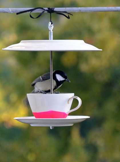 Vogeltjes kunnen in de tuin tegenwoordig uit kop en schotel eten en drinken