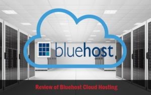 Pros and Cons of Bluehost Shared Hosting Service
