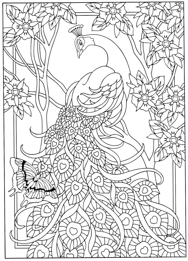 237 besten Coloring Therapy: Birds, Butterflies and Insects Bilder ...