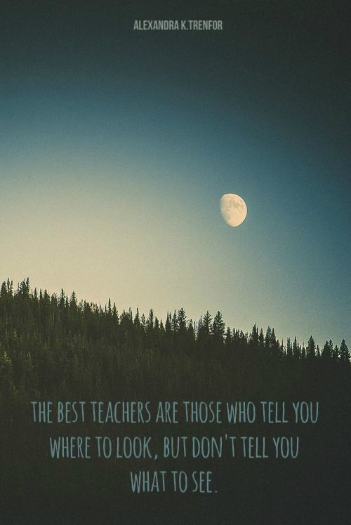 The best teachers are those who tell you where to look, but don't tell you what to see. By Alexandra K. Trenfor.