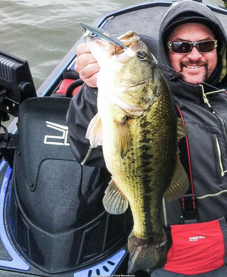 17 best images about lip rippin 39 on pinterest rigs for Wired 2 fish