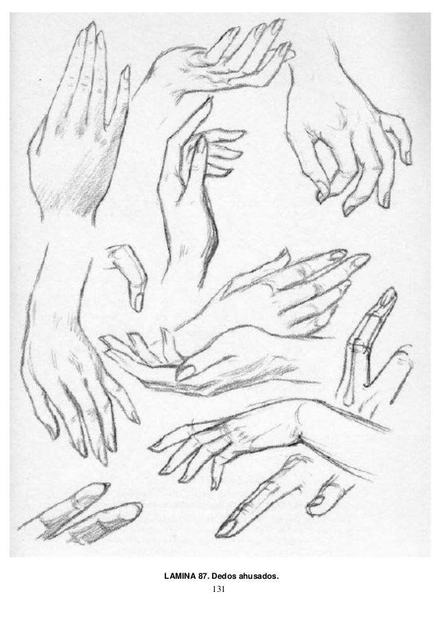Andrew loomis dibujo de cabeza y manos (español