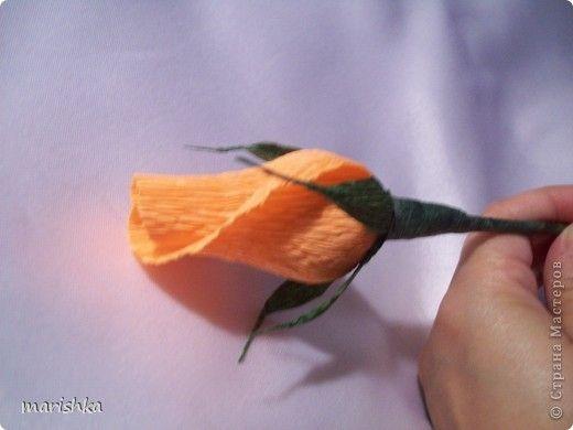 Master class, Sweet Design Bumagoplastika: My buds Rose MC Corrugated paper.  Photo 1