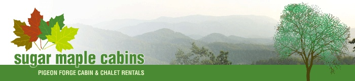 Great cabin rental company to use in Pigeon Forge