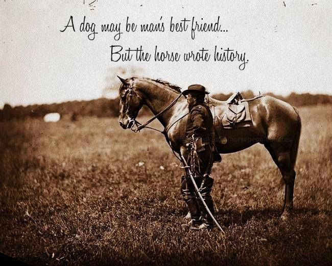 The horse wrote man's history