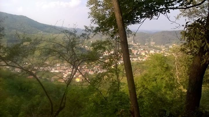 Vista dalla cima del Monte Orbieso sui colli Euganei