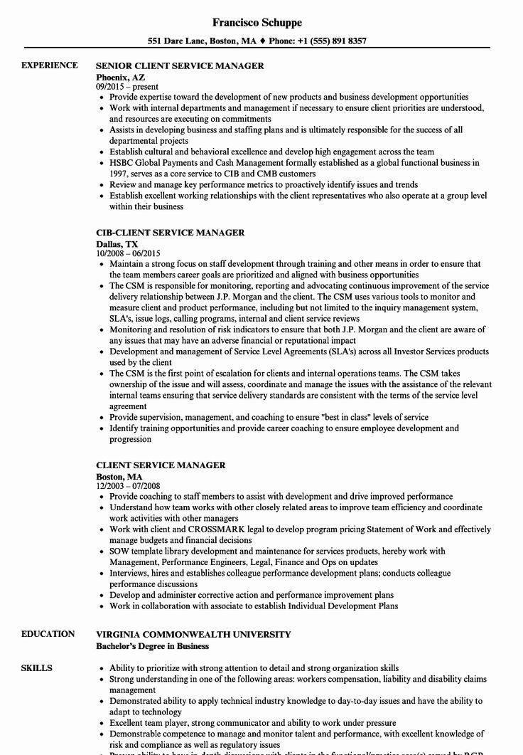 43++ Cfo resume examples 2019 ideas in 2021