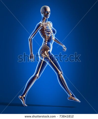 X ray looking 3 D rendering of naked woman, walking on floor, with bone skeleton superimposed, on blue background. by leonello calvetti, via...