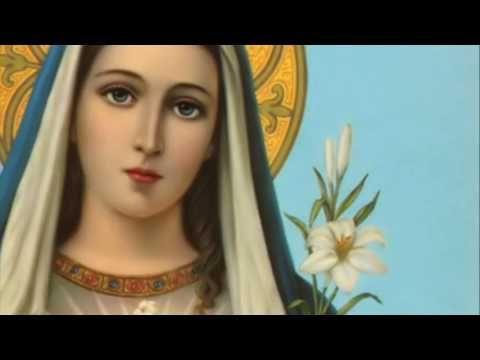 Profecias y revelaciones Mayo 20 2017 Mensaje Virgen Maria
