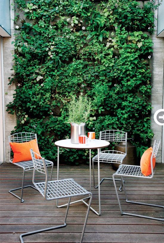 Emérita Desastre: Plantas: Jardines verticales