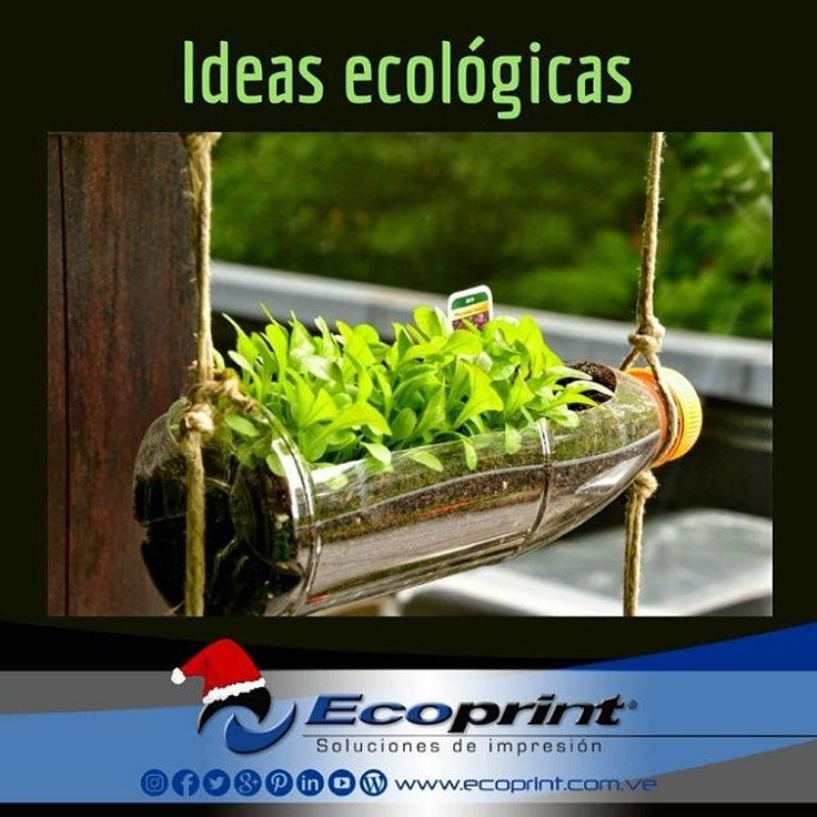 Muy #fácil de poner en práctica estos #jardines #colgantes con botellas de #plástico. Quedan hermosos 🌱🍀🌵🍃 #ecoprint #cartuchos #color #negro #impresora #tinta #tóner #rendimiento #imagen #calidad #economía #ecología #tecnología #compatible #genérico #impresión #venezuela  #islamargarita #islademargarita