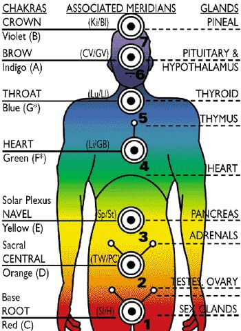 ∆ Chakras... Diagram showing the key relationships between the Chakras, Acupuncture Meridian and Endocrine Glands of the body