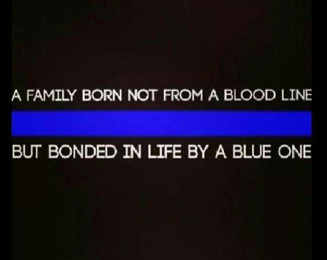 The thin blue line                                                       …