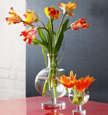 how to clean glass vase that is cloudy